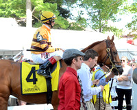 Wise Dan goes to post-0671