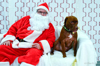 15 Santa Paws Canine Couture