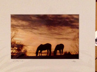 Ellen Pons Photography 8 x10s in 11 x 14 mats $20  - 09