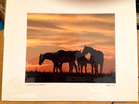 Ellen Pons Photography 8 x10s in 11 x 14 mats $20  - 02