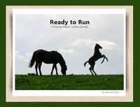 Ready to Run 24 page hardcover book